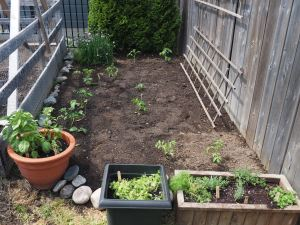 Outer garden- 1/2 way there